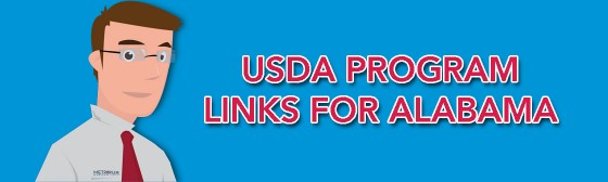 Usda Guidelines Usda Loan Pro