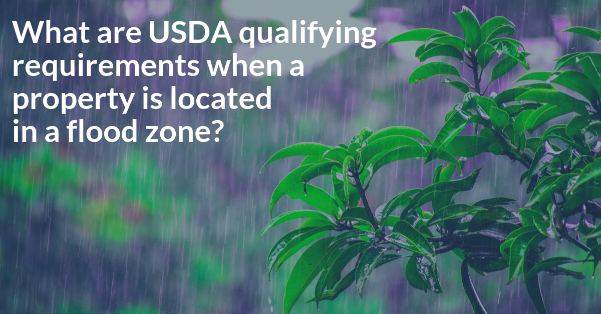 USDA Flood Zone Requirements