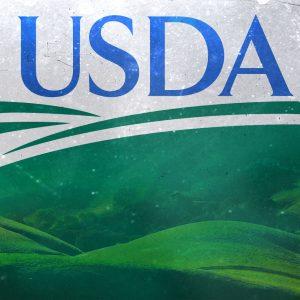 Tampa FL USDA Home Loan Approved Lender