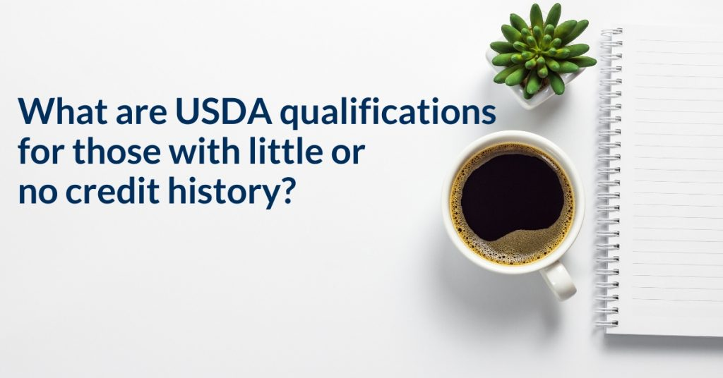 What are USDA qualifications for those with little or no credit history?