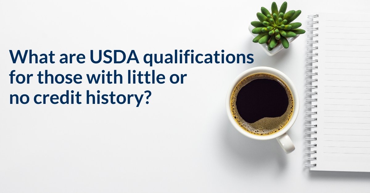 What are USDA credit requirements for those with little or no credit history?